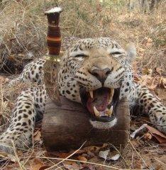 2G_zimbawe_hunting-knife_2.jpg